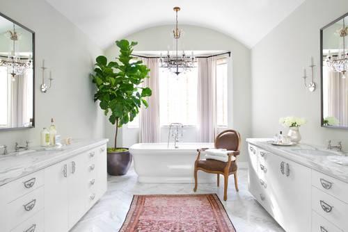 Fiolfikus i badrummet.