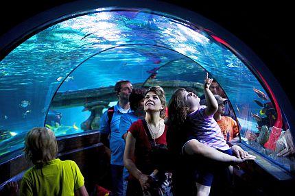 Undervattensvärlden Atlantis på Legoland