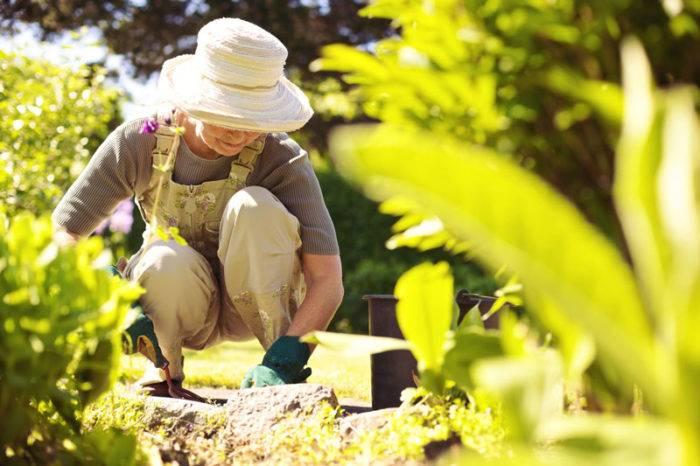 Att arbeta i trädgården är underbart!