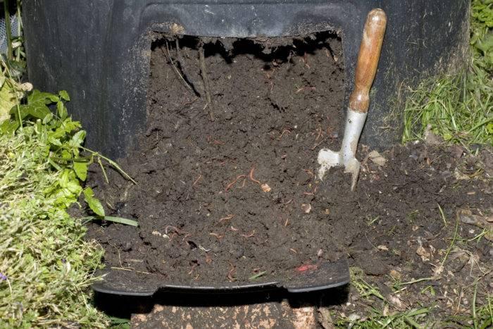 kompost grönsaksland