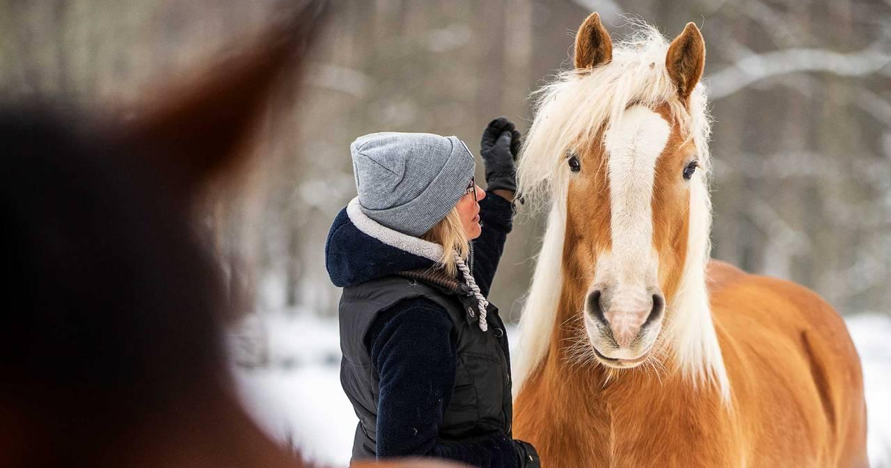 Carinas sambo använde djuren som ett sätt att tvinga kvar Carina i relationen. Foto: Birgitta Wiberg