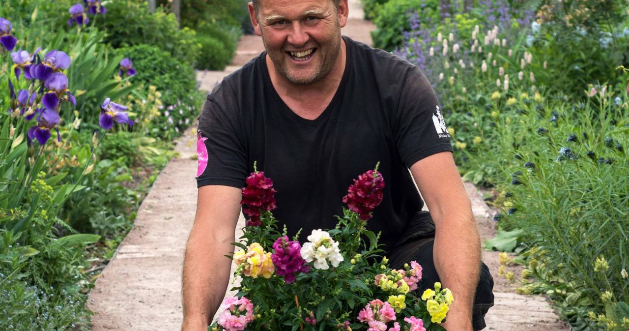 John Taylor med Årets sommarblomma 2017: Lejongap.