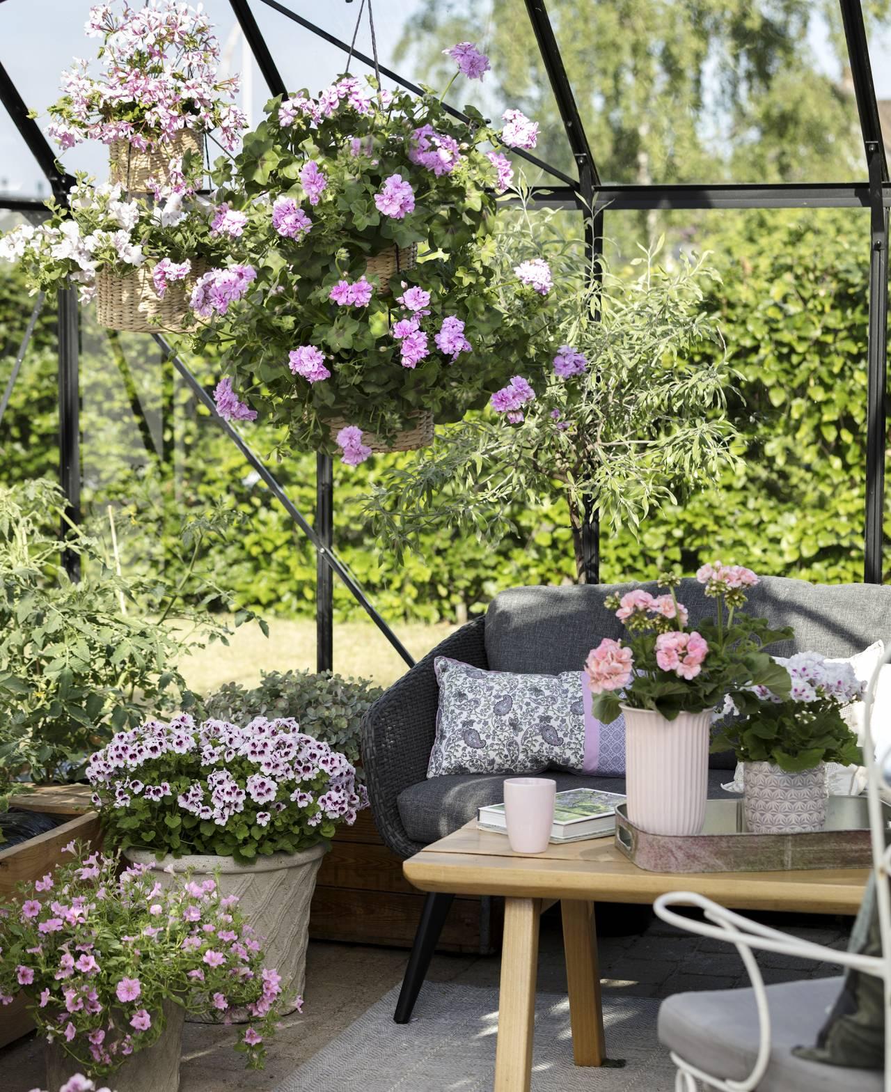 Vackert uterum med massor av blommor