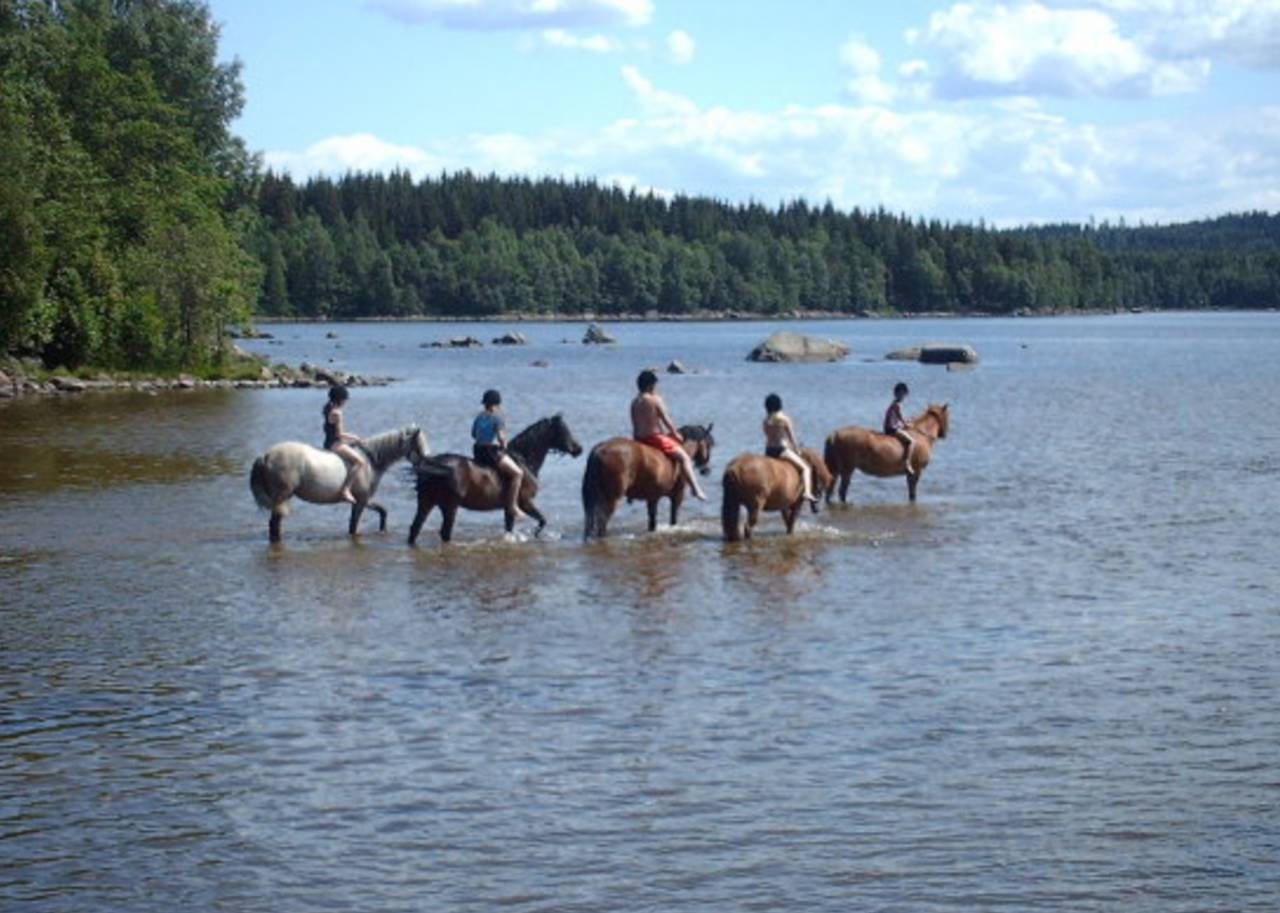 Elvira och hästen i vattnet