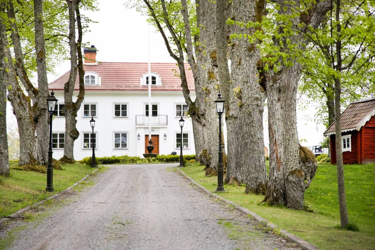 En vit herrgård med trädallé framför.