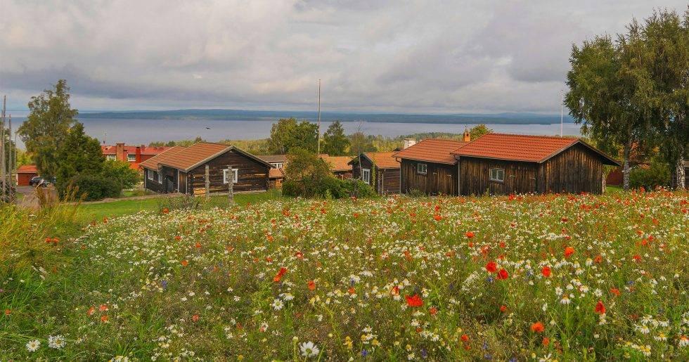 BIld på gamla hus i Tällberg vid sjön Siljan.
