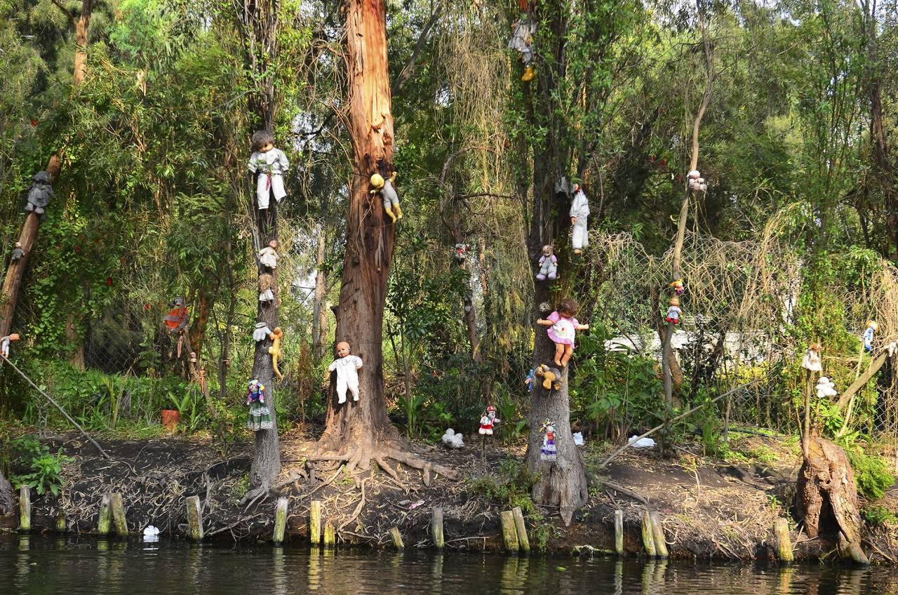 Dockön i Mexiko – dockor hänger i träden