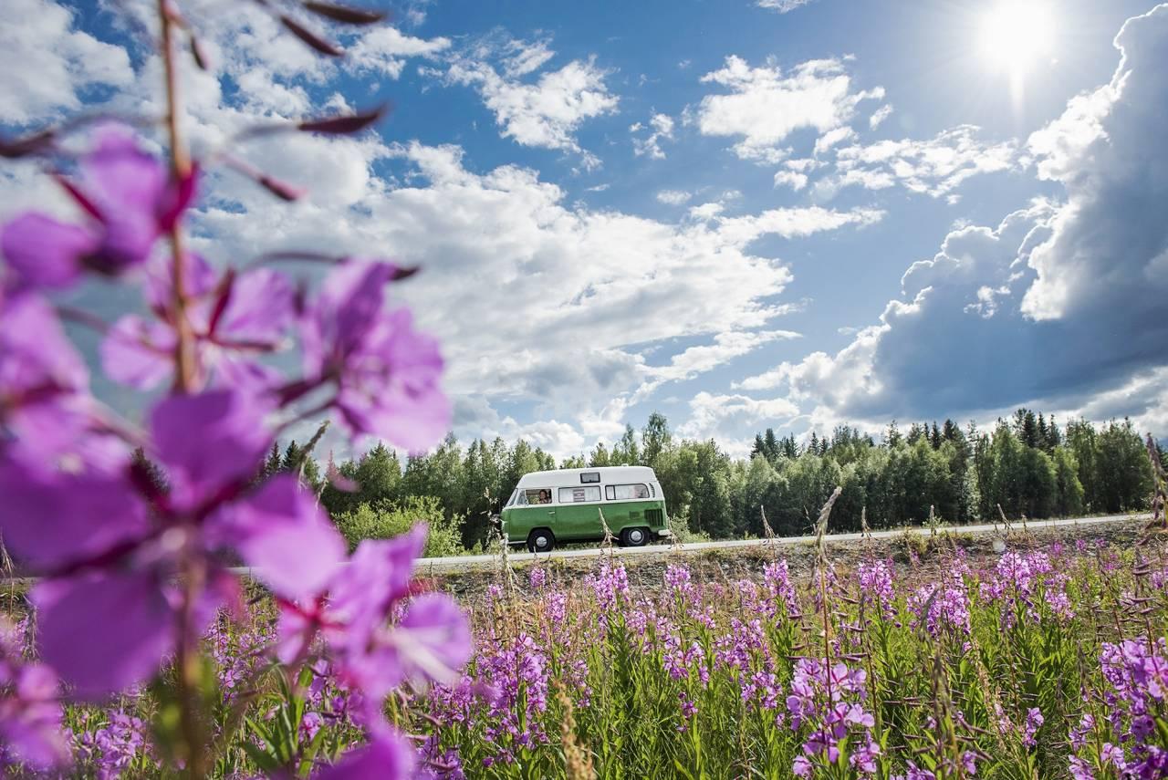 Susanne Jonssons bus Hjördis i vackra naturomgivningar