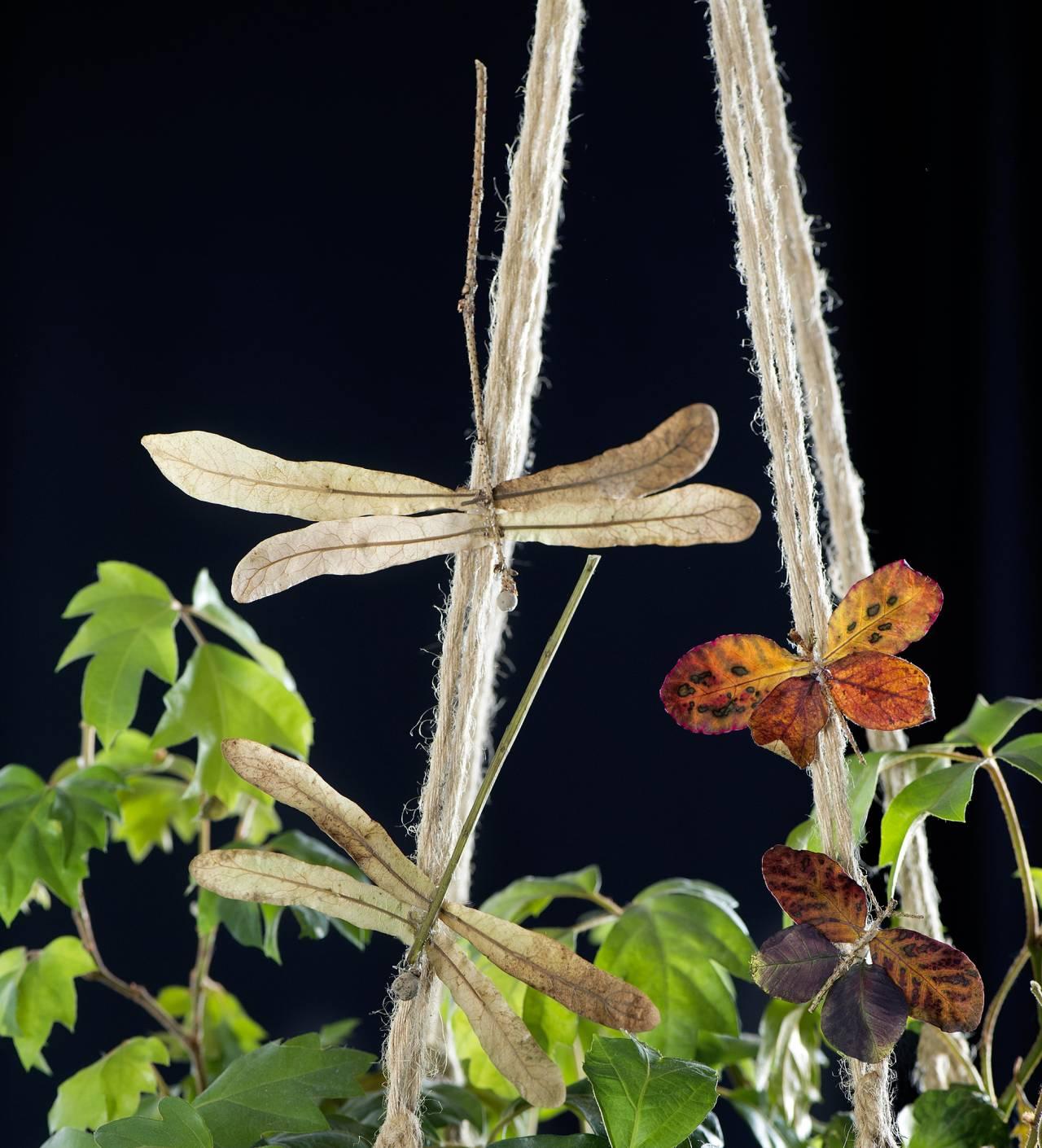 Fjärilar och sländor - skapade av torkade blad.