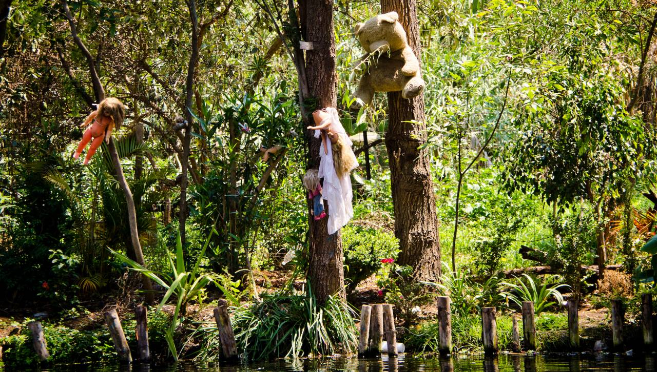 Dockor hänger i träd på Isla de las munecas, också kallad dockön