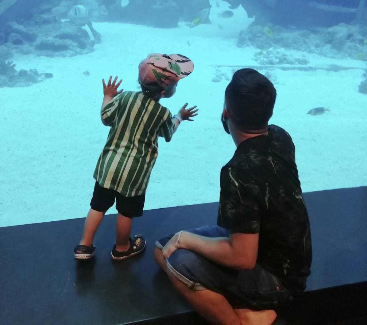 Henrys 2 årsdag som firades i Singapore. Här är de på akvariet S.E.A.