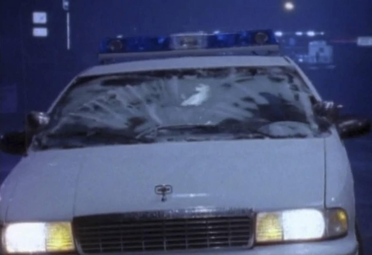David Laceys polisbil som blev översköljd av geléklumparna som regnade från himlen i Oakville