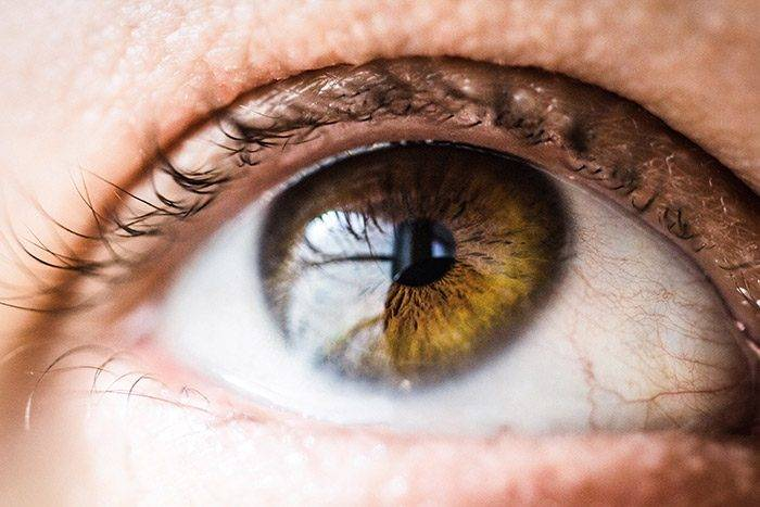 närbild av ett öga
