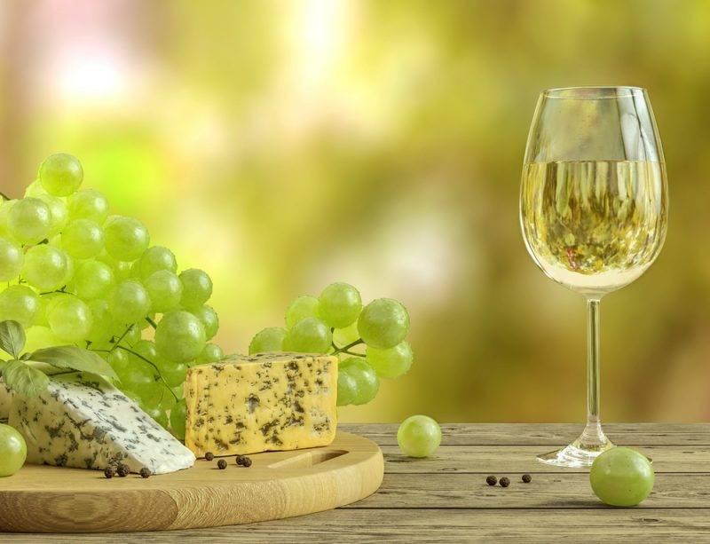 Vinprovning på gård
