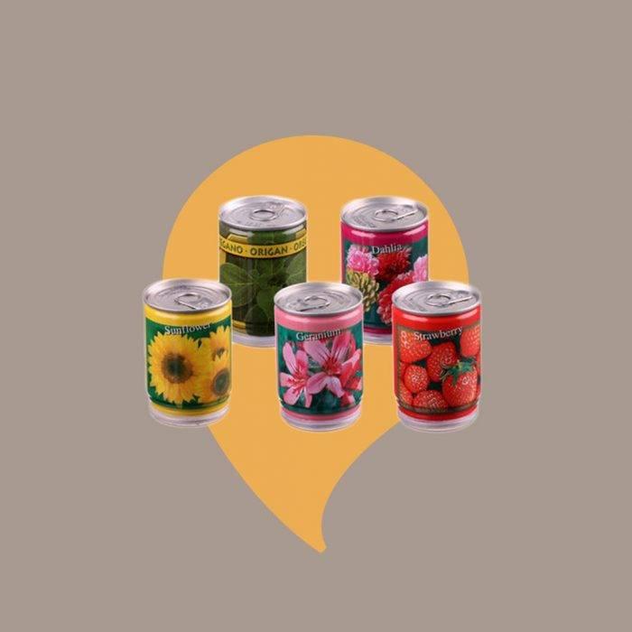 Tips på klappar till julklappsspelet: Konservväxter
