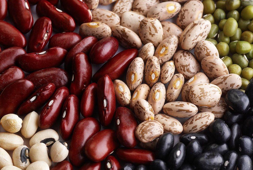 olika sorters bönor