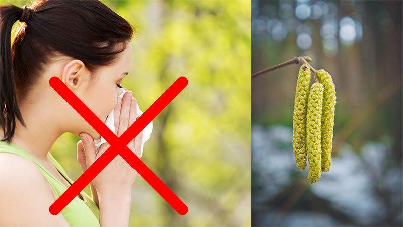 kan man bli pollenallergiker som vuxen