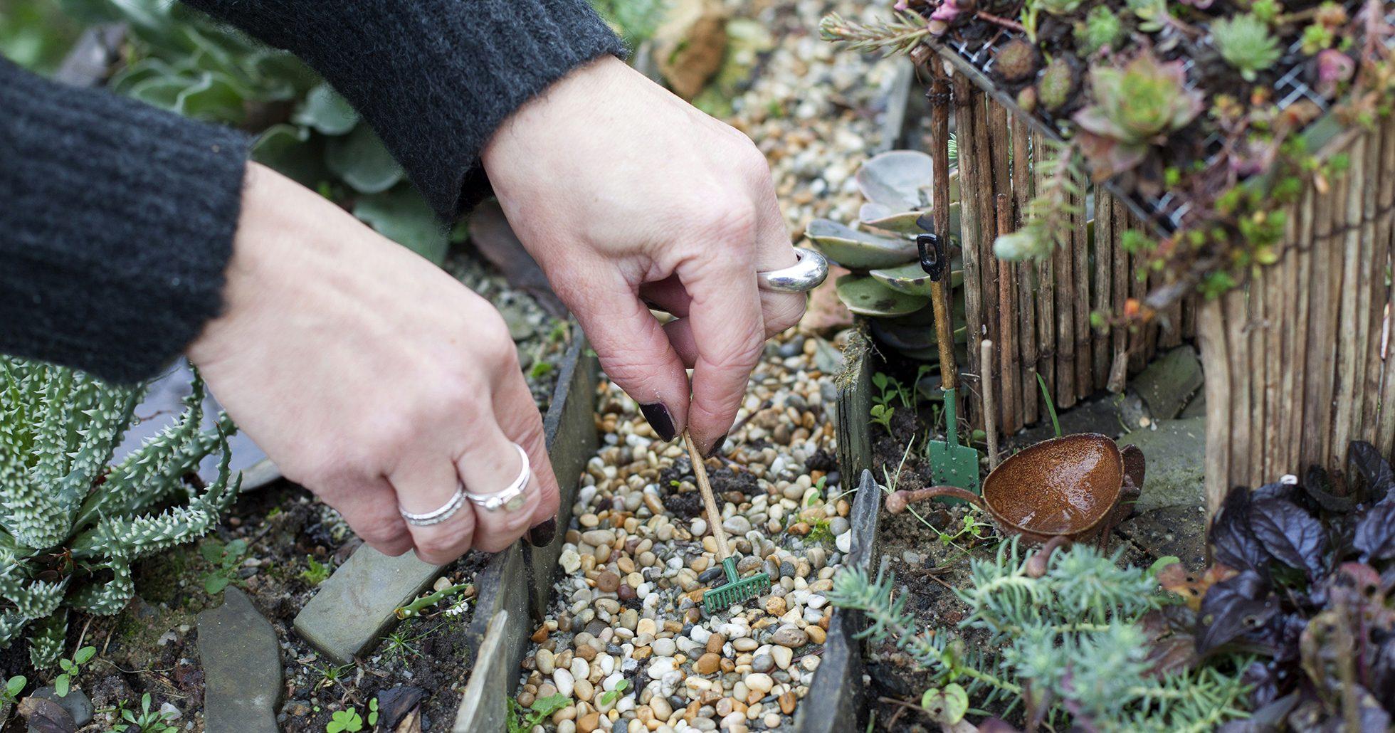 Så bygger du en miniatyrträdgård