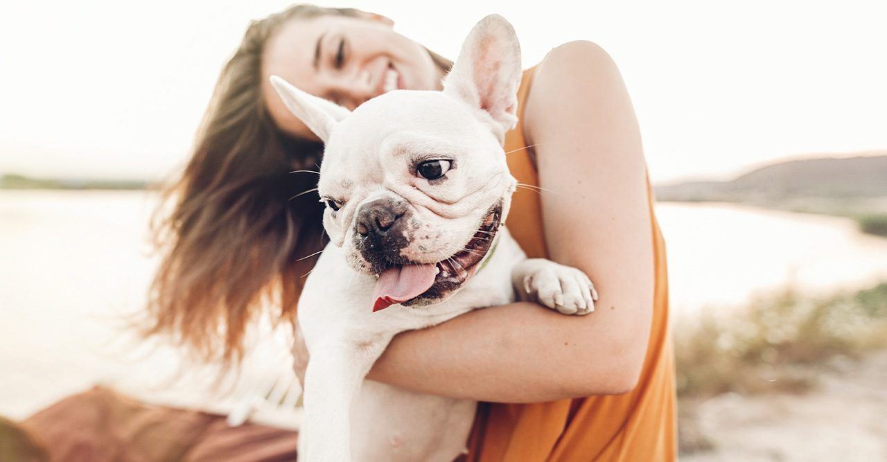 Ny studie: Hundägare är lyckligare än kattägare