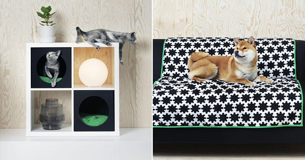 Ikea lanserar ny kollektion – framtagen för hunden och katten