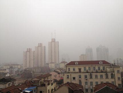 Good air quality enl Shanghai Daily2