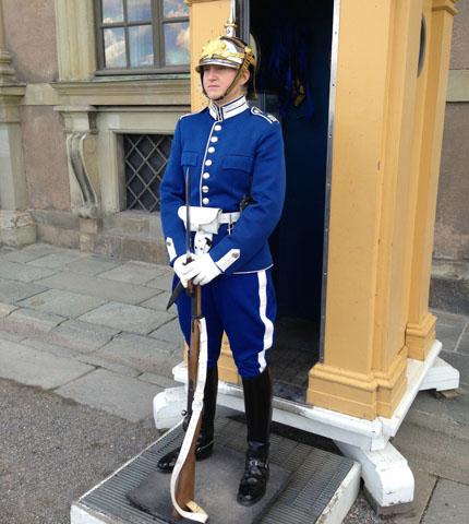 Guard blue2
