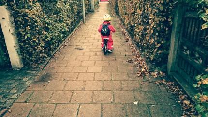 cykel höst