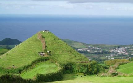 Inte konstigt att smöret på Azorerna smakar gott när korna lever så här året runt?