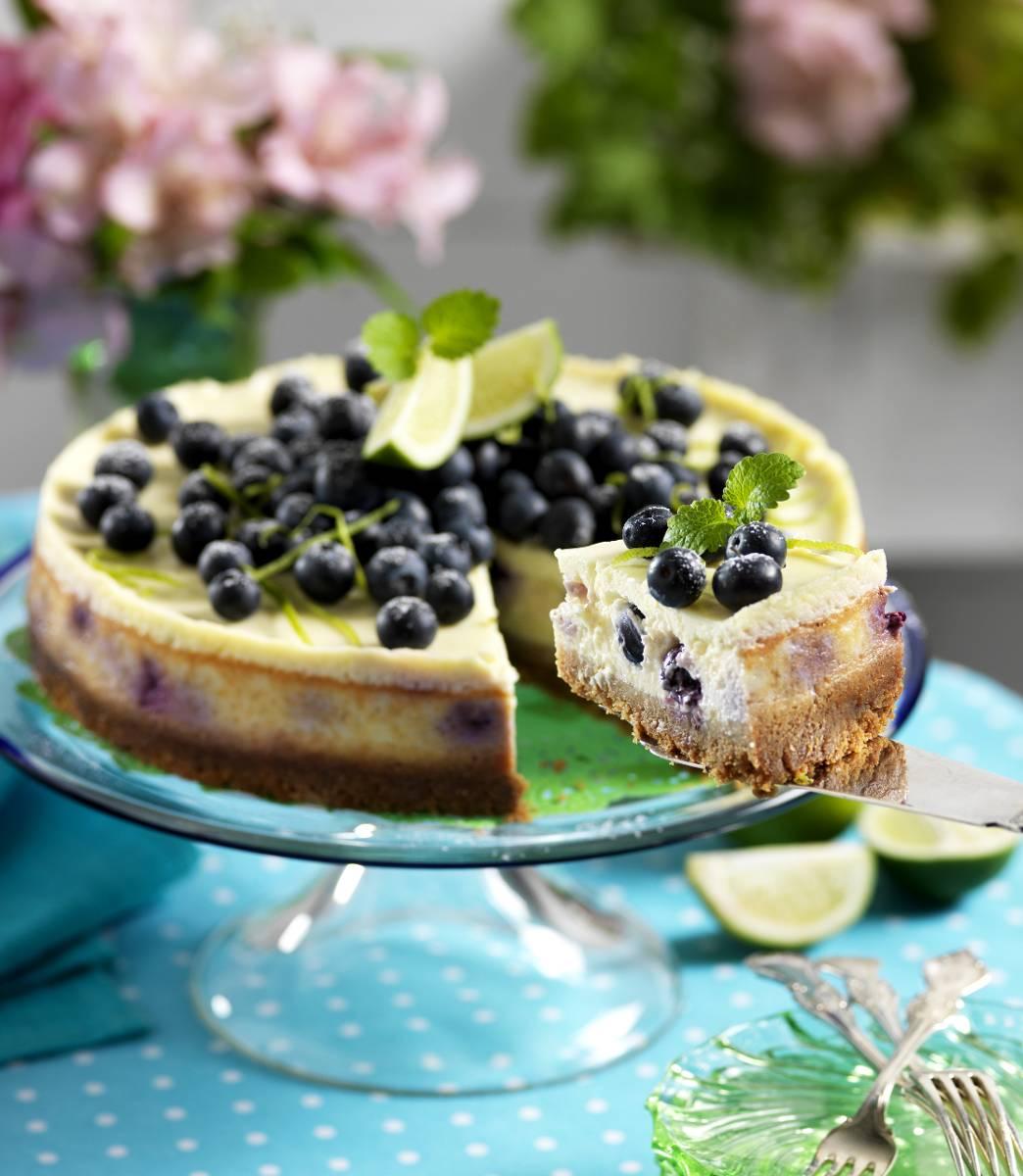 lime cheesecake i ugn