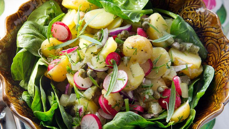 potatissallad på nypotatis