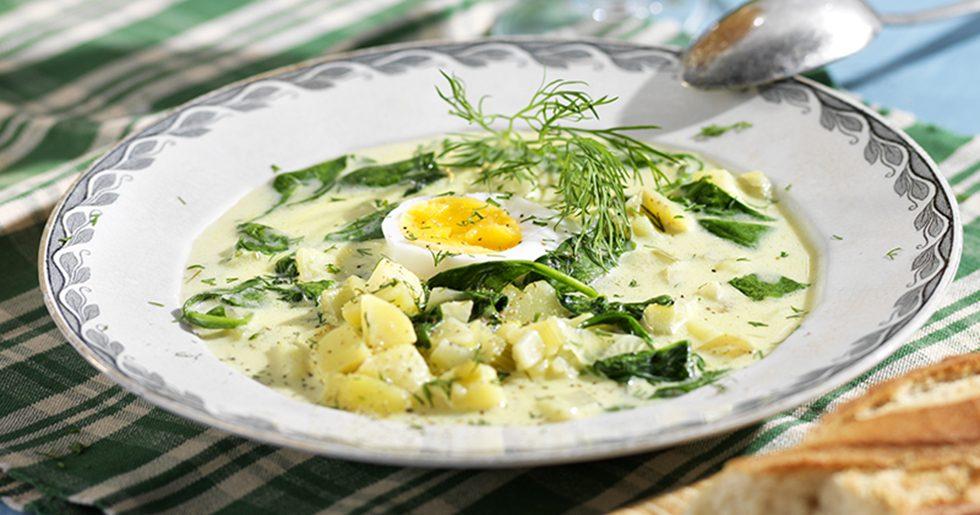 Potatissoppa med fänkål
