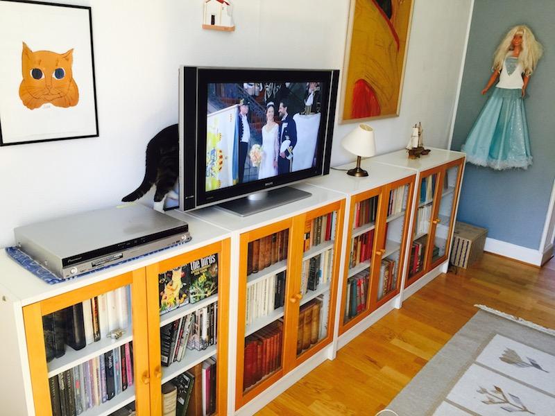 Katter på låga bokhyllor med vitrinskäp.