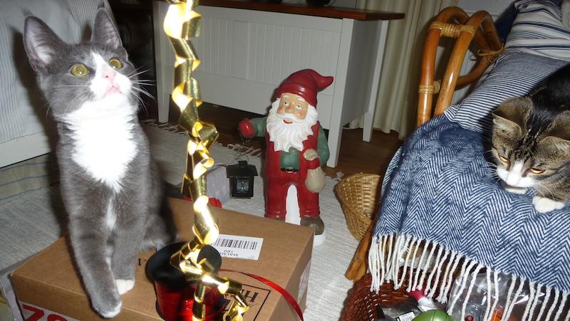 Katter med julklappar, julpynt och tomte