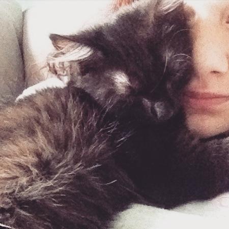Matte och katt kelar