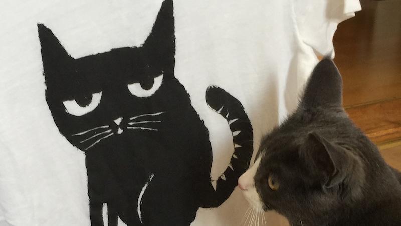 Katt undersökter t-shirt med katt