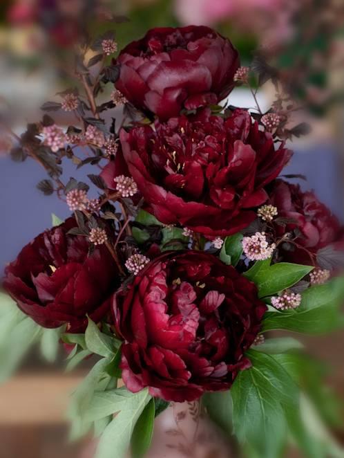 Räds inte djupa kulörer – burgundy skapar en fin kontrast till de gröna bladen.